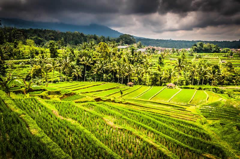 Bali, une destination de choix pour d'incroyables clichés